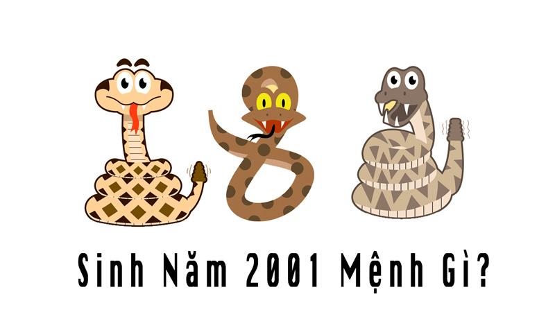 Những người sinh năm 2001 mệnh gì cung gì?