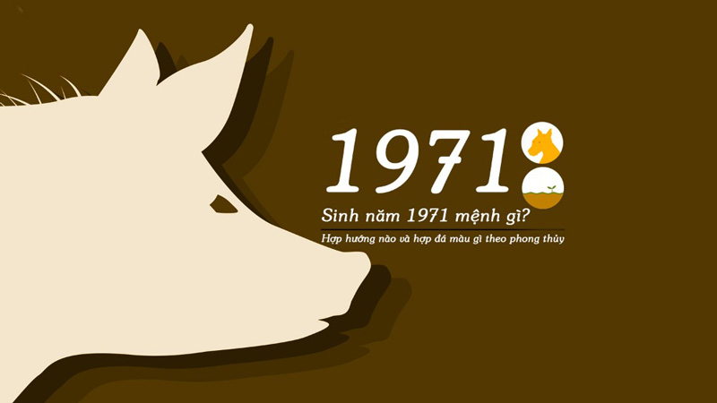 Tan hợi sinh năm 1971 mệnh gì